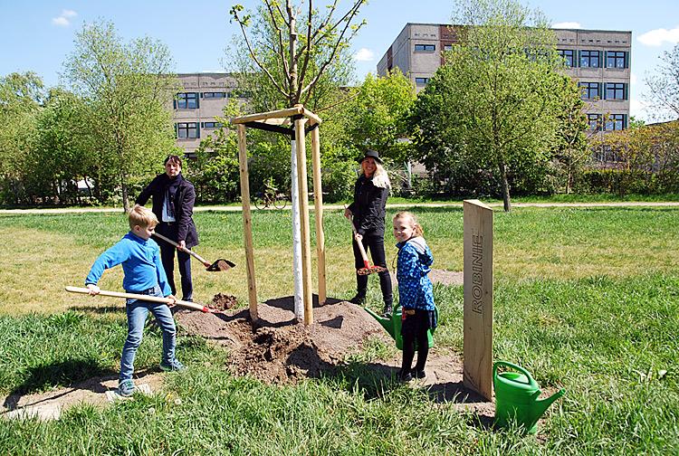 Baum des Jahres: Robinie im Bürgerpark Paunsdorf gepflanzt ...